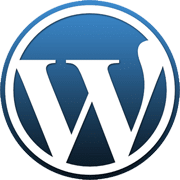 Wordpress Miami Web Design